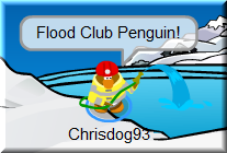 flood-club-penguin