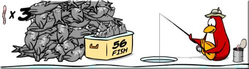 grey-fish