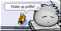 sleeping-puffle